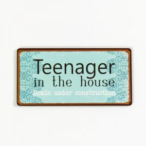 Magnet- Teenager in the house, brain under constructions