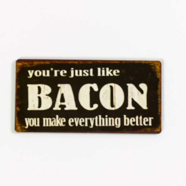 Magnet- You are just like bacon, you make everything better