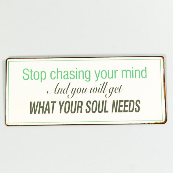 """Skylt """"Stop chasing your mind and you will get what your soul needs"""""""