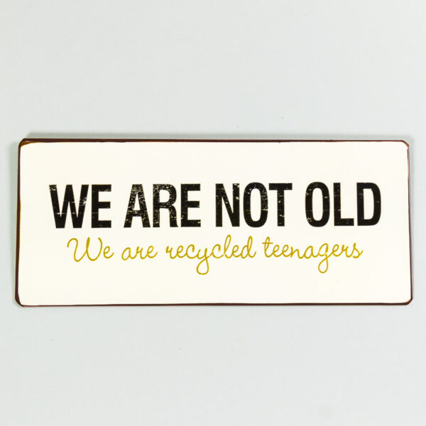 Plåtskylt- We are not old, we are recycled teenager