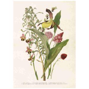 Poster med bild på blomsterbukett