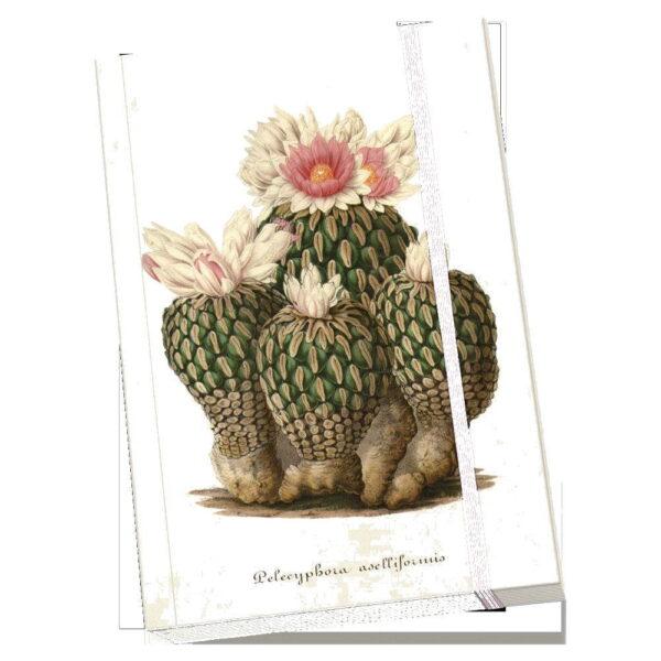 Anteckningsbok kaktusar mjuk pärm