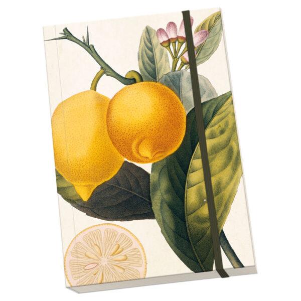 Anteckningsbok Citroner