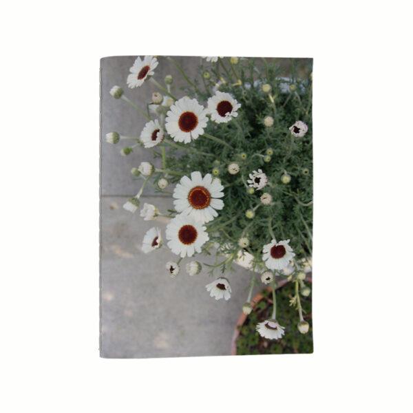Anteckningsbok - Kamomill med vackra blommor