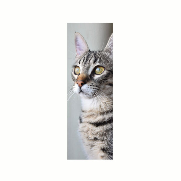 Bokmärke med en katt på