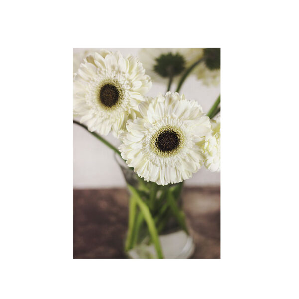 Kort Här står vi med vita blommor i en vas