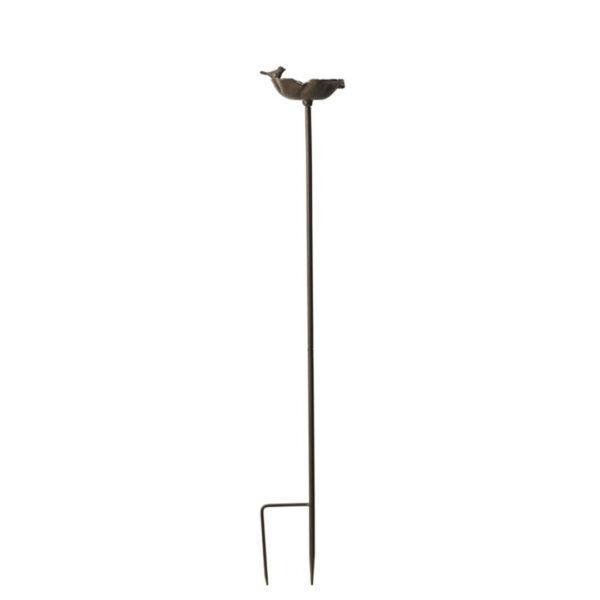 Fågelbad-helbild