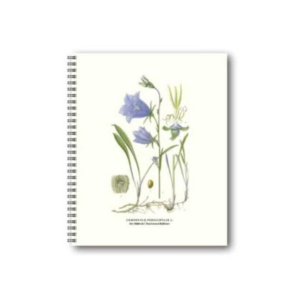 Anteckningsbok med bild på Blåklocka ur boken Bilder ur Nordens Flora
